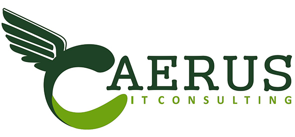 Caerus IT Consulting